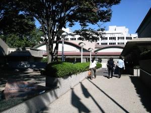 世田谷美術館 建築も素敵