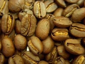 小笠原産コーヒー