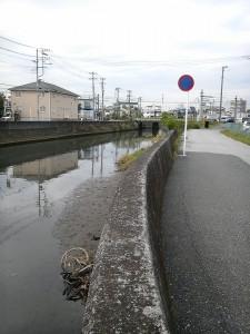 矢那川 なんの変哲もない川
