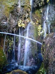 近めに見ると白糸の滝のよう