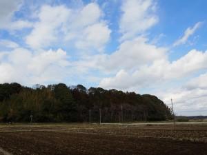 佐倉の田園風景