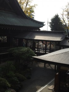 筑波神社 本殿裏