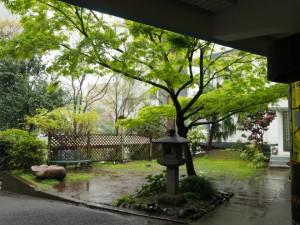 日仏学院 庭