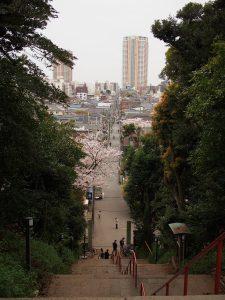 大好きな弘法寺の階段