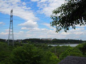 竹やぶからの景色