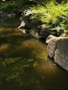 石の視線の流れ