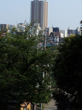 寺から市川駅を見る