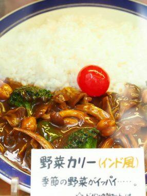 野菜カレー サンプル