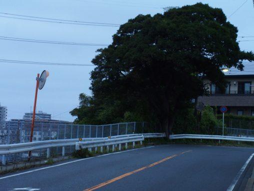 夏見の坂!!