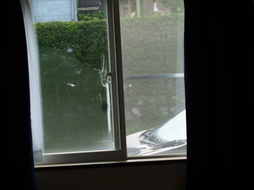 窓から関さん にゅーーー