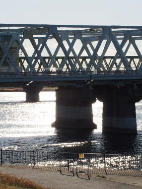 おやつの時間の江戸川