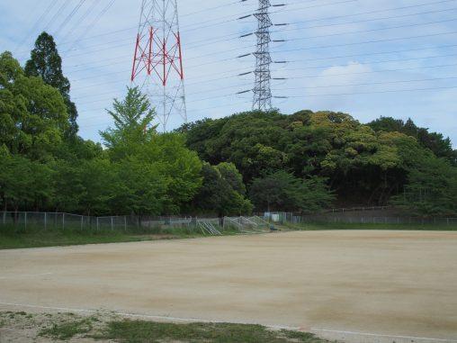 運動公園 サッカー場