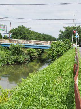 ブラジル屋そばの矢那川