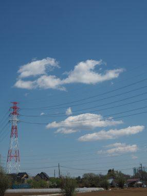 雲がふわふわ