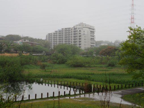 長津川パート2