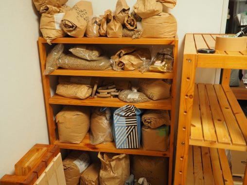 ちょっと古い方の豆棚