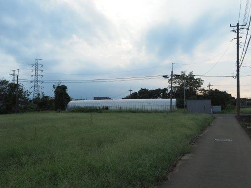 塚田近くの畑