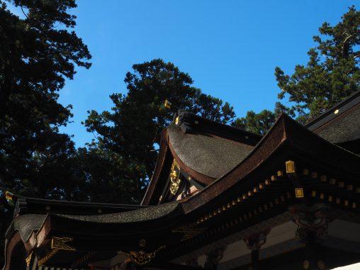 檜皮葺の屋根