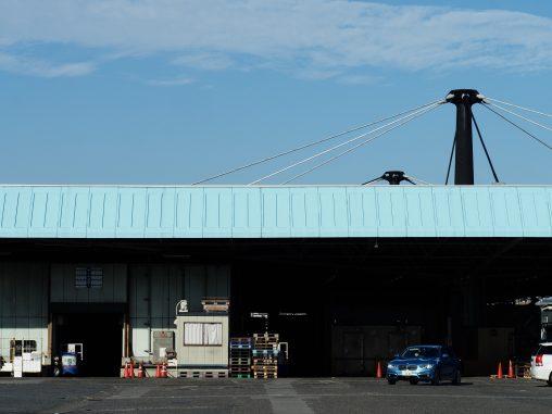 船橋市場の青