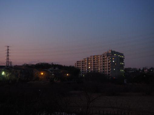 いつもの長津川公園の景色