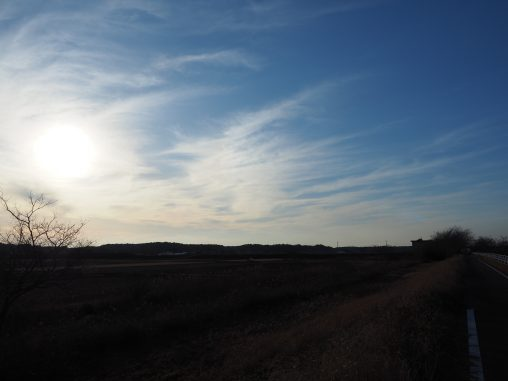 印旛沼 空