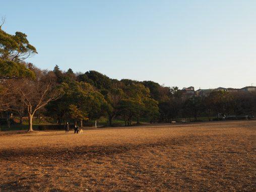 長津川の午後