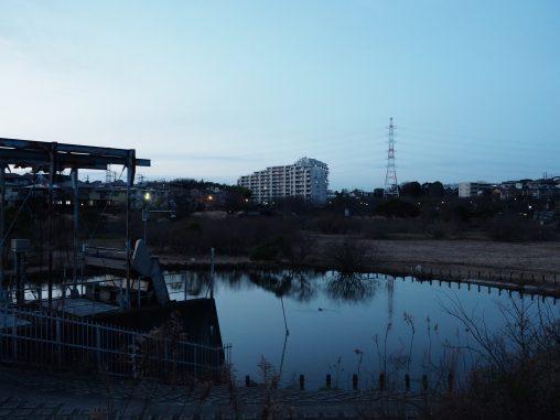 長津川親水公園2021.3.1