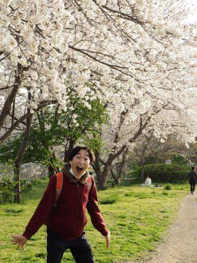 春を満喫 長津川親水公園