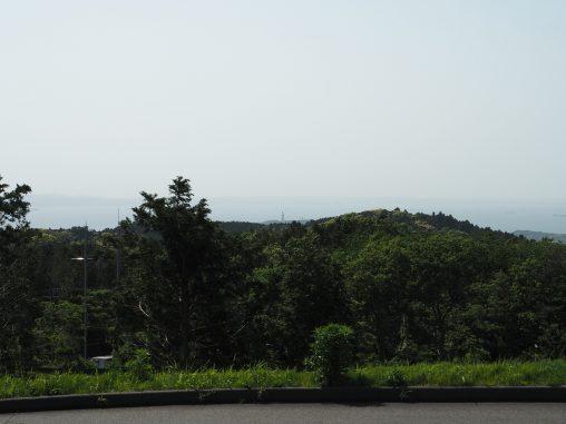 マザー牧場から東京湾