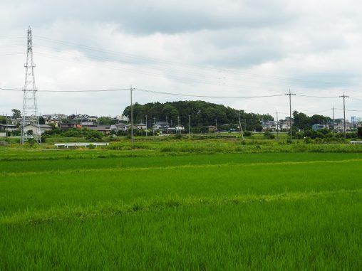 大津川周辺田園風景