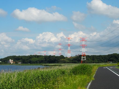 手賀沼と送電線